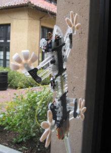 robot StickyBot