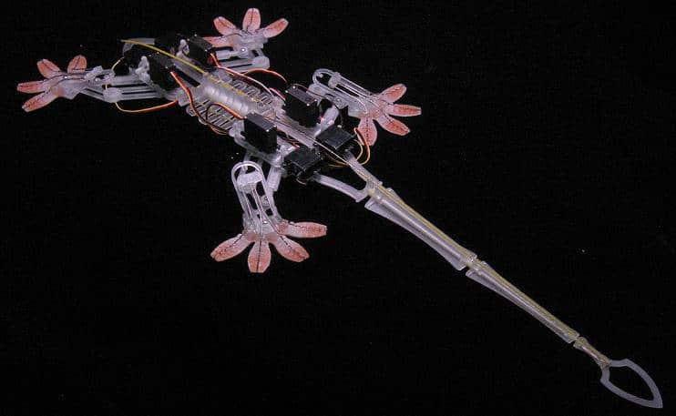 robot gecko StickyBot