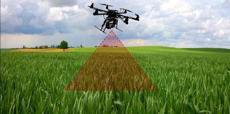 utilisation des drones en agriculture