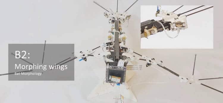 BatRobot: un robot chauve-souris plus vrai que nature