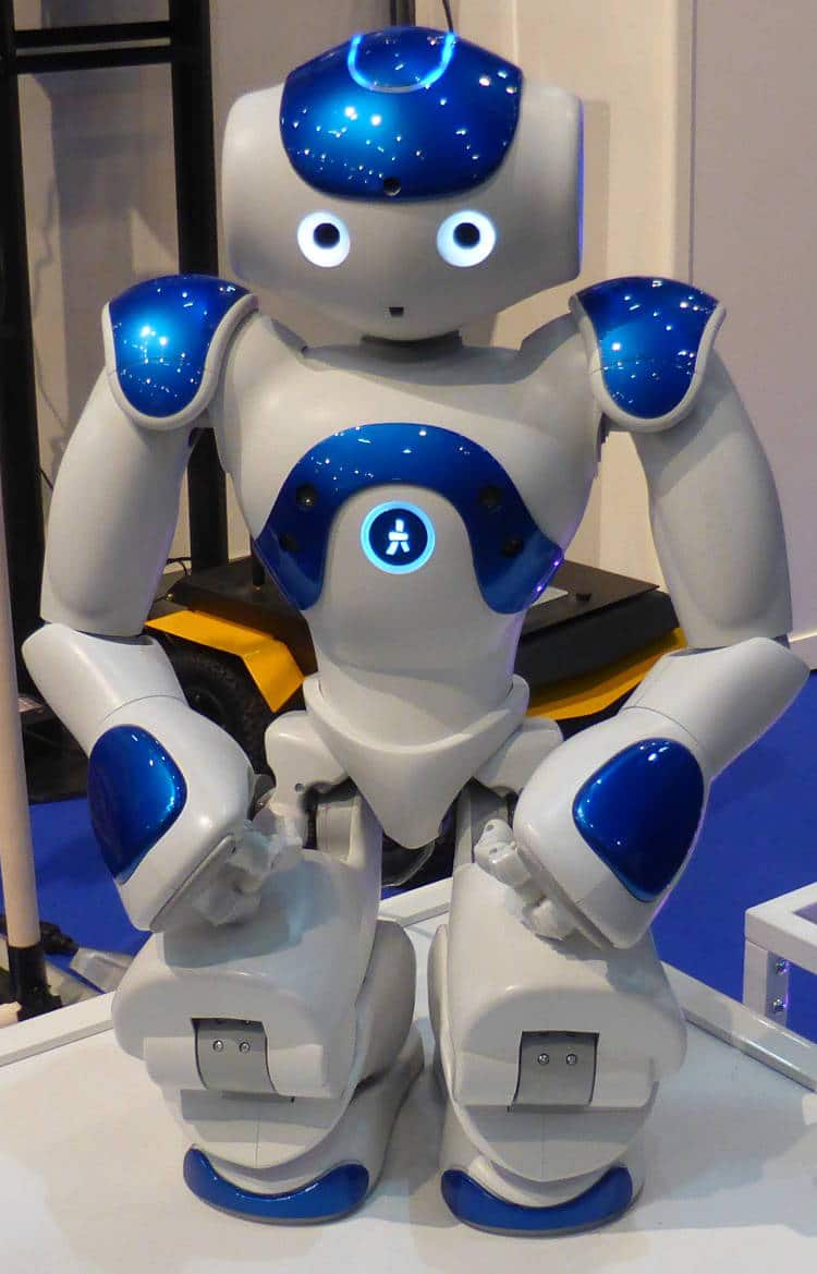 choisir un robot de compagnie