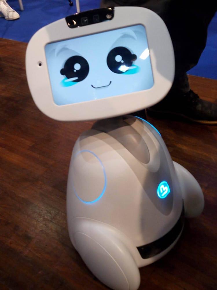 buddy le robot de compagnie
