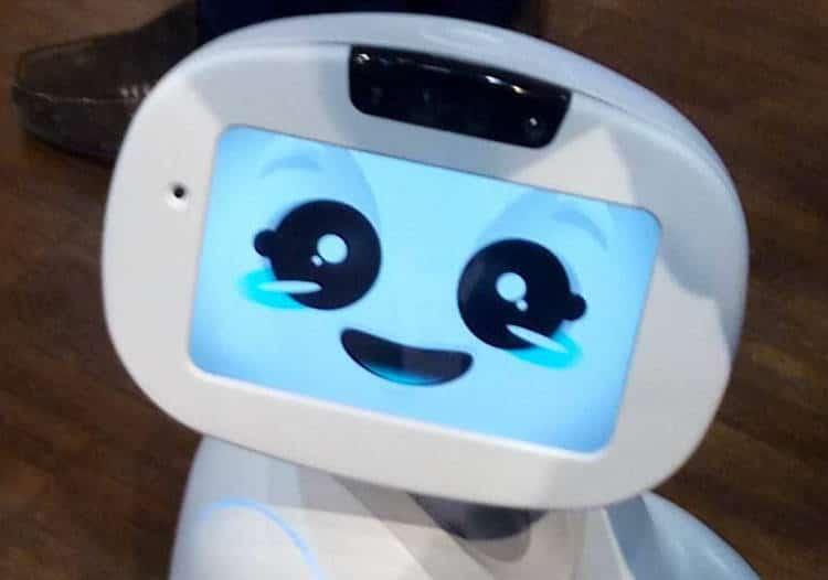 buddy, robot compagnon pas cher