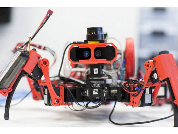 Des araignées; des robots; des imprimantes 3D: vous obtenez …