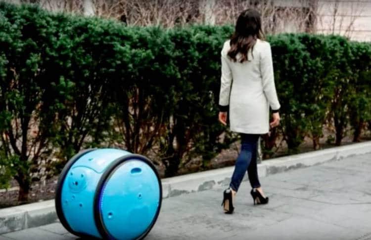 Un robot chariot pour la vie de tous les jours avec Gita