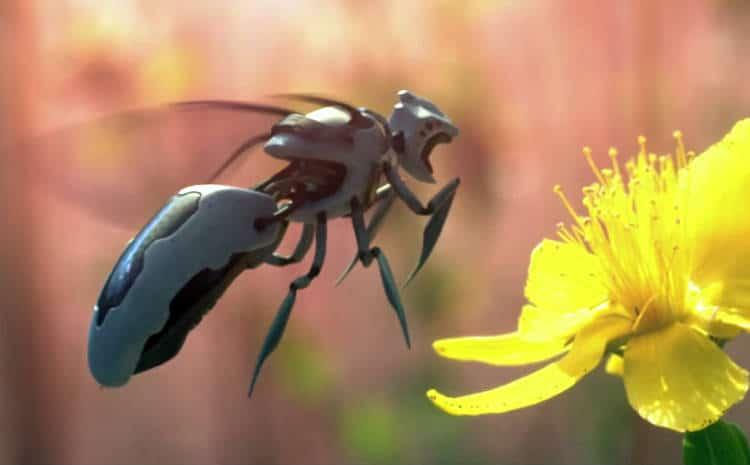 Des robots abeille ou abeilloïdes autonomes et intelligentes dans la nature ?
