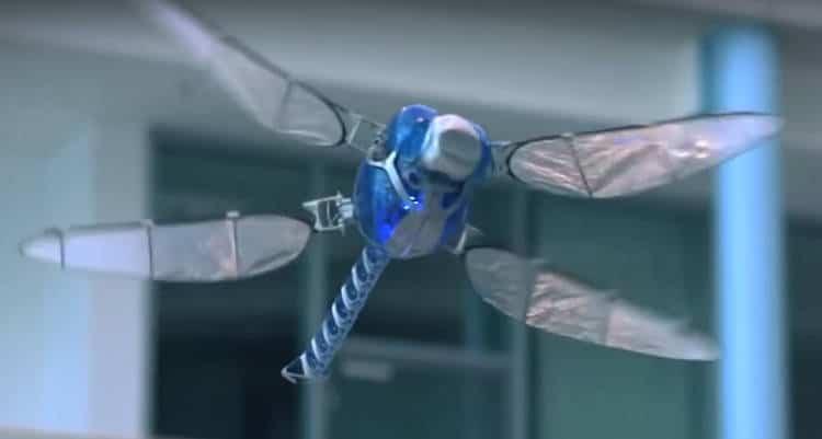 Les animaux robots les plus foufous en vidéo