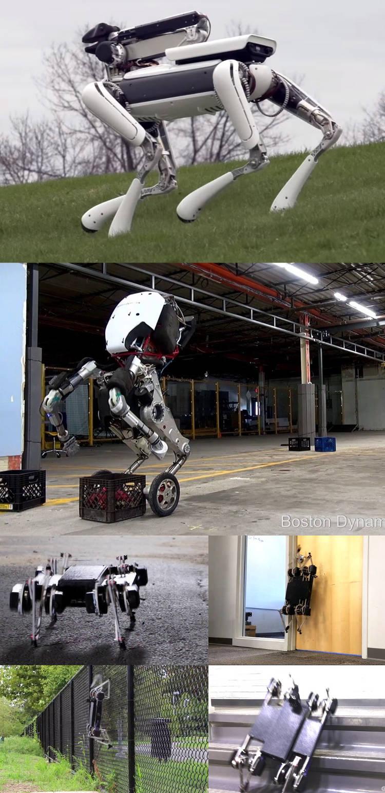 robot spotmini handle minitaur 3 robots chiens pour l'armée américaine !