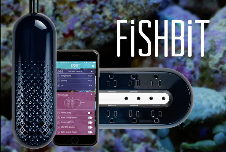 L'aquarium connecté pour assurer le bien-être de vos poissons