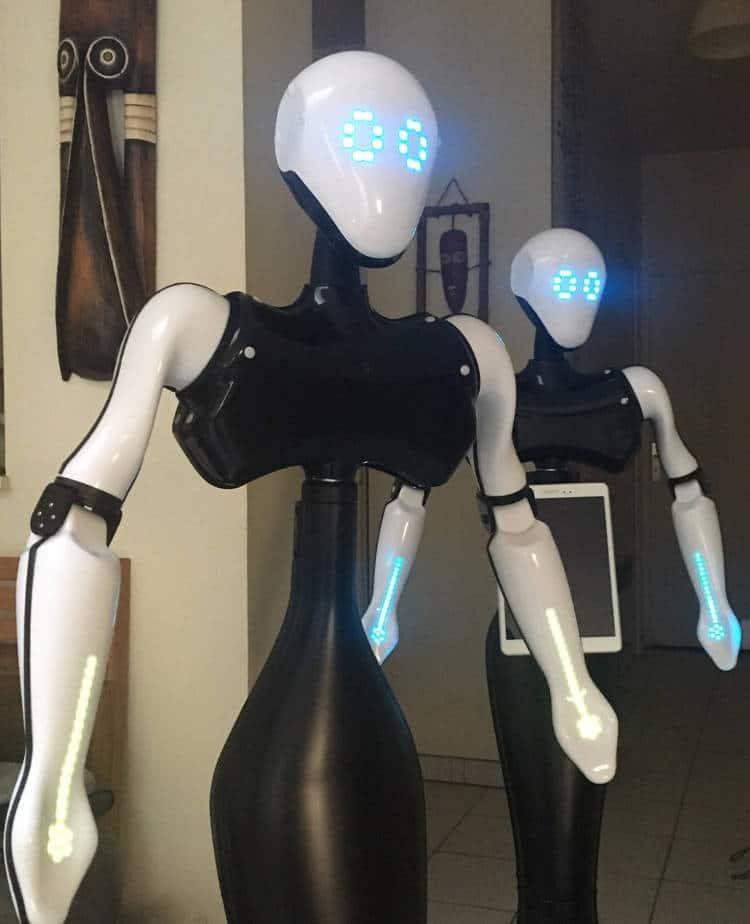 Le robot est programmé pour interpeller les passants et les rediriger