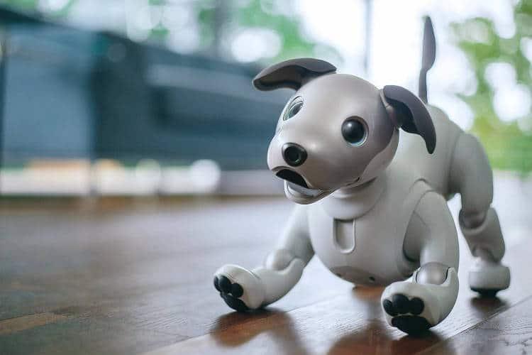 En 2018, un robot de compagnie plus agile (22 degrés de liberté)