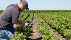 la data au service du monde agricole