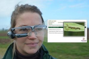 Des lunettes connectées pour voir les plantes malades