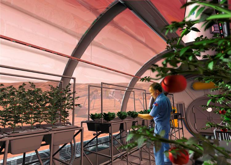 Voyage sur Mars : Elon Musk et Space Xnous révèlent les détails du projet