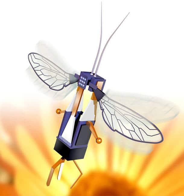 Drone abeille et nouvelles technologies : une réalité pour faire face à l'extinction