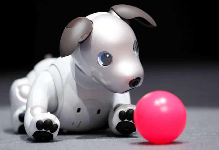 Sony relance Aibo, le robot-chien adoré des Japonais